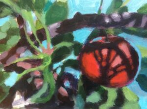 franse appel Beatrijs van den Bos